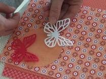 Sagoma della farfalla ritagliata